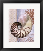 Beachhouse Blue III Framed Print