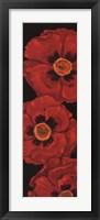 Bella Grande Poppies Framed Print