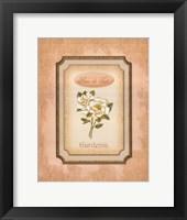 Framed Eau de Parfum IV