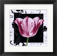 Framed Damask Tulip I