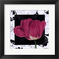 Framed Damask Tulip II