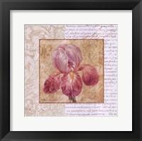 Le Jardin II Framed Print