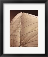 Windward Sail III Framed Print