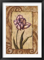 Framed Classic Tulip I