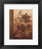 Framed Maple Leaves - mini