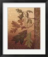 Framed Oak Leaves