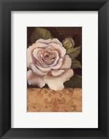 Framed Antique Rose I