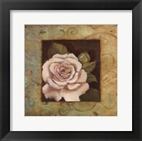 Framed Antique Rose III