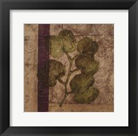 Nature Study 4 Framed Print