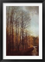 Framed Winter Light I