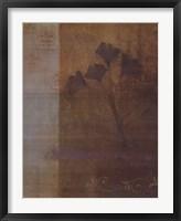 Framed Woodland Shadows I - CS