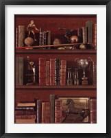 Librairie IV Framed Print