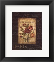 Framed Bel Bouquet III - mini