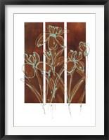 Framed Flourish I