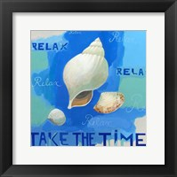 Framed Shells of Time II