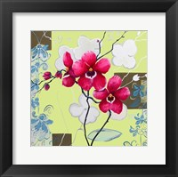 Framed Orchids in Bloom IV
