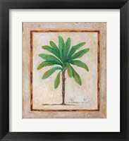 Framed Banana Palm