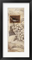 Spring Bird II Framed Print