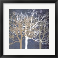 Tranquil Trees Framed Print