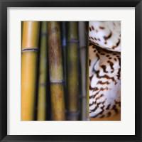 Bamboo II Framed Print
