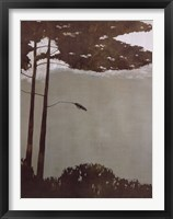 Framed Canopy