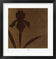 Framed Iris (Metallic)