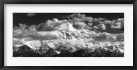 Framed Denali National Park