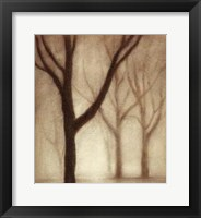 Framed Forest I