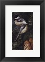 Framed Chickadees