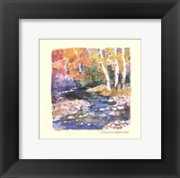 Framed Autumn Stream