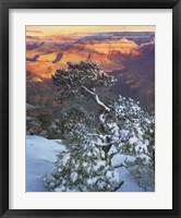 Framed Grand Canyon Sunrise