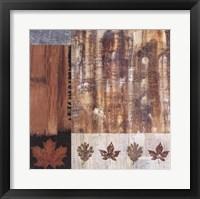Framed Woodlands I