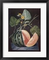 Framed Polinac Melon