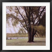 Framed Lakeside Trees II