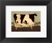Framed American Cow
