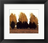 Near Vado Framed Print