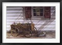 Framed Pansies 4 Sale