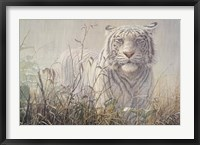 Framed Monsoon- White Tiger (detail)