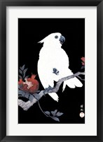 Framed Ukiyo-E Parrot