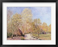 Framed Autumn Landscape