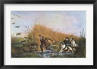 Framed Wild Duck Shooting