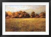 Framed Field with Treeline