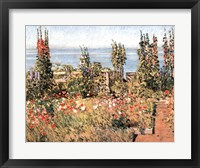 Framed Hollyhocks, Isle of Shoals