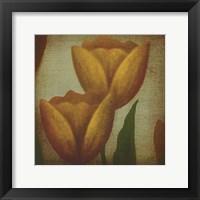 Framed Floreo III