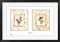 Framed Rose Bud Medley