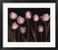 Framed Spring Chorus