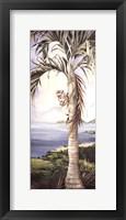 Framed Kohala Palm