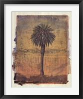 Framed Palm Study 2