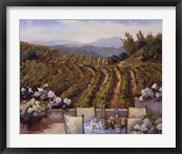 Framed Vineyards to Mount St. Helena