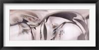 Tiger Lilies 4 Framed Print